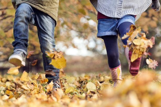 932b776fb Детская обувь на осенний сезон